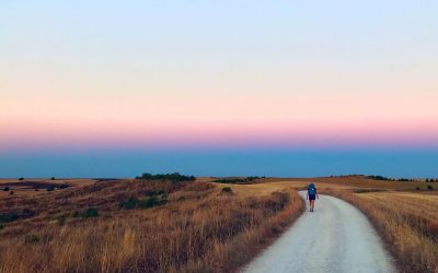 Walking the Camino de Santiago Frances